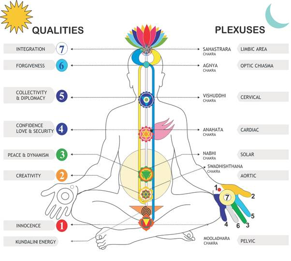 Article de Crystal Dreams Les 7 grands chakras et leurs significations